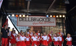 2016-Dellbrücker-Straßenfest-1